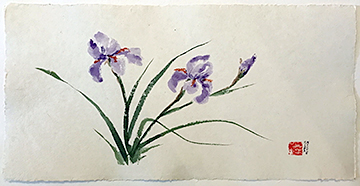 Irises by Barbara Rizza Mellin
